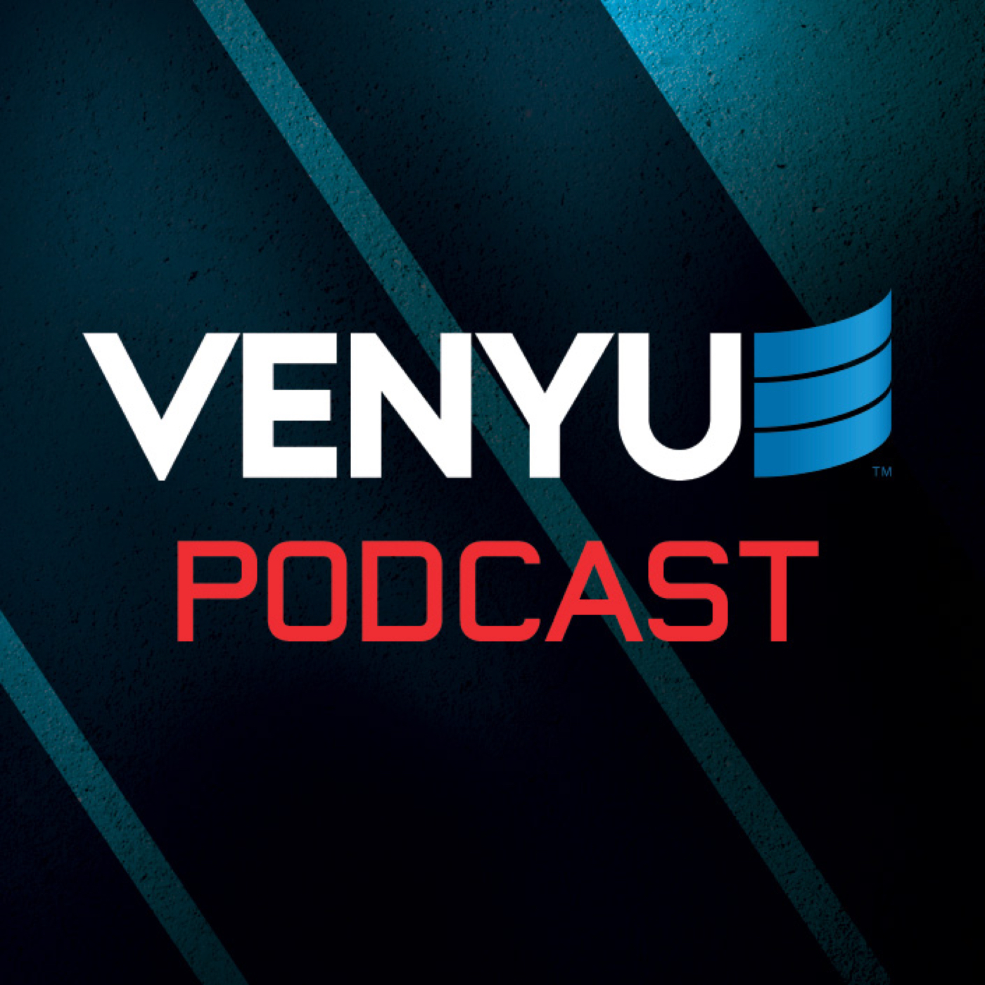 Venyu Solutions Podcast (Audio)